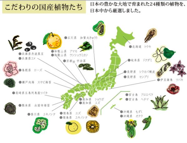 りんれん24種類の植物成分.png